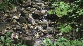 Κινηματογράφηση σε πρώτο πλάνο δύσκολος καταρράκτης βουνών Το ρεύμα νερού πέφτει γρήγορα κάτω και δημιουργεί τον άσπρο βράζοντας  απόθεμα βίντεο