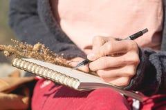 Κινηματογράφηση σε πρώτο πλάνο σε ετοιμότητα ενός κοριτσιού που κρατά ένα κενό σημειωματάριο Μια ξηρά ανθοδέσμη των χορταριών στο Στοκ εικόνες με δικαίωμα ελεύθερης χρήσης