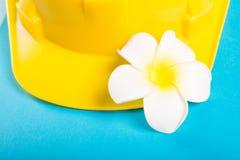 Κινηματογράφηση σε πρώτο πλάνο κίτρινο hardhat και του εξωτικού λουλουδιού Στοκ εικόνες με δικαίωμα ελεύθερης χρήσης