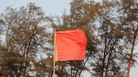Κινηματογράφηση σε πρώτο πλάνο κόκκινων σημαιών που κυματίζει στον αέρα σε ένα κλίμα των πράσινων κωνοφόρων δέντρων απόθεμα βίντεο