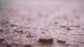 Κινηματογράφηση σε πρώτο πλάνο, μεγάλες, βαριές πτώσεις της βροχής, βροχοπτώσεις, ντους, πτώση με έναν ψεκασμό, παφλασμοί νερού,  απόθεμα βίντεο
