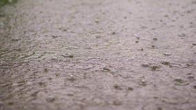 Κινηματογράφηση σε πρώτο πλάνο, μεγάλες, βαριές πτώσεις της βροχής, βροχοπτώσεις, ντους, πτώση με τους παφλασμούς νερού, φυσαλίδε απόθεμα βίντεο