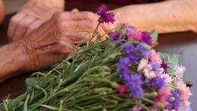 Κινηματογράφηση σε πρώτο πλάνο μιας ανθοδέσμης των λουλουδιών και των ζαρωμένων χεριών φιλμ μικρού μήκους