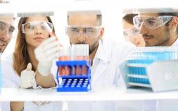 Κινηματογράφηση σε πρώτο πλάνο μιας ομάδας επιστημόνων και φαρμακοποιών στο εργαστήριο Στοκ φωτογραφίες με δικαίωμα ελεύθερης χρήσης