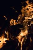 Κινηματογράφηση σε πρώτο πλάνο μιας πυράς προσκόπων Στοκ φωτογραφίες με δικαίωμα ελεύθερης χρήσης
