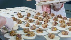 Κινηματογράφηση σε πρώτο πλάνο που πυροβολείται της παραγωγής χεριών μπουλεττών κρέατος Σφαίρες κρέατος Sculpt Γυναίκα εργαζόμενο απόθεμα βίντεο