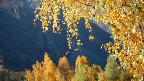Κινηματογράφηση σε πρώτο πλάνο που πυροβολείται του μεγάλου βουνού φιλμ μικρού μήκους