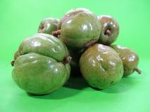Κινηματογράφηση σε πρώτο πλάνο πράσινο ciruelas εξωτικά φρούτα της Ονδούρας στοκ φωτογραφίες