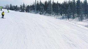 Κινηματογράφηση σε πρώτο πλάνο της κλίσης και των ανθρώπων σκι που κάνουν σκι και που σε μια διαδρομή σκι κοντά στο κωνοφόρο δάσο απόθεμα βίντεο