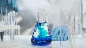 Κινηματογράφηση σε πρώτο πλάνο της κωνικής φιάλης με το μπλε υγρό, χημικό πείραμα στο εργαστήριο στοκ εικόνες