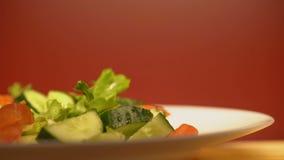 Κινηματογράφηση σε πρώτο πλάνο της σαλάτας με τα λαχανικά, υγιεινή διατροφή για την απώλεια βάρους, χορτοφάγα τρόφιμα απόθεμα βίντεο