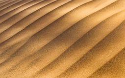 Κινηματογράφηση σε πρώτο πλάνο της σύστασης αμμόλοφων στην έρημο Κόκκινος αμμόλοφος, Ναμίμπια Sossuvlei στοκ εικόνα