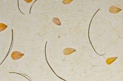 Κινηματογράφηση σε πρώτο πλάνο της χειροποίητης ανασκόπησης σύστασης εγγράφου με τα πέταλα Στοκ Εικόνα