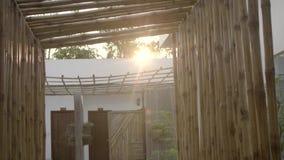 Κινηματογράφηση σε πρώτο πλάνο τοίχων μπαμπού απόθεμα βίντεο