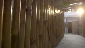 Κινηματογράφηση σε πρώτο πλάνο τοίχων μπαμπού φιλμ μικρού μήκους