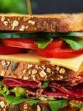 Κινηματογράφηση σε πρώτο πλάνο του εύγευστου σάντουιτς με το σαλάμι, το τυρί και τα φρέσκα λαχανικά στοκ εικόνες