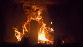 Κινηματογράφηση σε πρώτο πλάνο του καψίματος πυράκτωσης στο κούτσουρο εστιών που καλύπτεται από την πυρκαγιά φλογών απόθεμα βίντεο