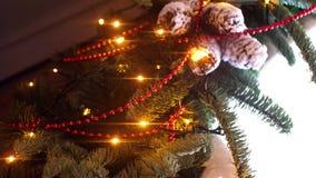Κινηματογράφηση σε πρώτο πλάνο του κλάδου του χριστουγεννιάτικου δέντρου με τη γιρλάντα Πλαίσιο Οι κλάδοι του χριστουγεννιάτικου  απόθεμα βίντεο