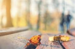 Κινηματογράφηση σε πρώτο πλάνο του ξηρού πορτοκαλιού φύλλου στον πάγκο στο πάρκο στοκ εικόνες