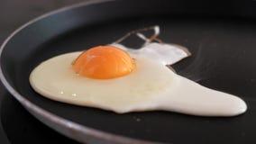 Κινηματογράφηση σε πρώτο πλάνο του τηγανίσματος ενός αυγού σε ένα τηγανίζοντας τηγάνι απόθεμα βίντεο