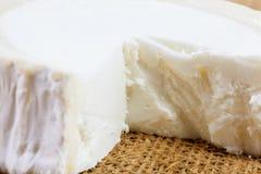 Κινηματογράφηση σε πρώτο πλάνο του φρέσκου γαλλικού τυριού αιγών ` s Στοκ φωτογραφία με δικαίωμα ελεύθερης χρήσης