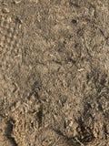 Κινηματογράφηση σε πρώτο πλάνο του χώματος στοκ φωτογραφία