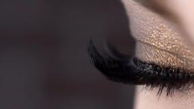 Κινηματογράφηση σε πρώτο πλάνο του όμορφου θηλυκού ματιού με τα πολύ μαύρα μαστίγια r Ακραίο μήκος των eyelashes, έξοχος μαύρος κ απόθεμα βίντεο