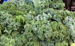 Κινηματογράφηση σε πρώτο πλάνο του Kale Στοκ Φωτογραφίες