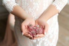 Κινηματογράφηση σε πρώτο πλάνο των θηλυκών χεριών που κρατούν μια χούφτα των λουλουδιών serruria στοκ εικόνα