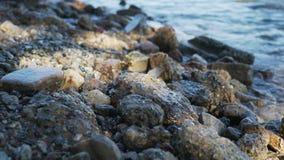 Κινηματογράφηση σε πρώτο πλάνο των κυμάτων πρωινού στην ωκεάνια ακτή σε Καλιφόρνια Στοκ Εικόνα