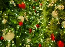 Κινηματογράφηση σε πρώτο πλάνο των μικτών διακοσμήσεων Χριστουγέννων στο δέντρο με τα φω'τα στο πλαίσιο στοκ εικόνες