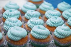 Κινηματογράφηση σε πρώτο πλάνο των μπλε cupcakes Εκλεκτική εστίαση Το γλυκό muffin έννοιας τροφίμων επιδορπίων νόστιμο ντους μωρώ Στοκ Εικόνα