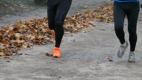 Κινηματογράφηση σε πρώτο πλάνο των ποδιών των ανθρώπων που τρέχουν μέσω του πάρκου το φθινόπωρο απόθεμα βίντεο