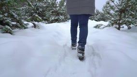 Κινηματογράφηση σε πρώτο πλάνο των ποδιών γυναικών που περπατούν στη χιονώδη πορεία στο δάσος πεύκων το χειμώνα φιλμ μικρού μήκους