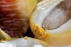 Κινηματογράφηση σε πρώτο πλάνο των φρούτων και του σύκου ημερομηνίας στοκ εικόνα