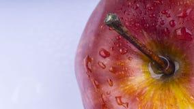 Κινηματογράφηση σε πρώτο πλάνο των φρούτων μήλων στο άσπρο υπόβαθρο Στοκ φωτογραφία με δικαίωμα ελεύθερης χρήσης