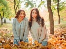 Κινηματογράφηση σε πρώτο πλάνο των όμορφων κοριτσιών, αδελφές διδύμων, στο πάρκο φθινοπώρου στοκ εικόνες με δικαίωμα ελεύθερης χρήσης