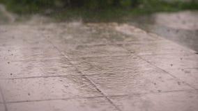 Κινηματογράφηση σε πρώτο πλάνο, υπάρχει δυνατή βροχή, ένα ντους, μεγάλη βαριά σταλαγματιά πτώσεων επάνω στα κεραμίδια οδών πτώση  απόθεμα βίντεο