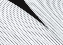 Κινηματογράφηση σε πρώτο πλάνο φτερών πουλιών Στοκ εικόνα με δικαίωμα ελεύθερης χρήσης