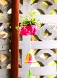 Κινηματογράφηση σε πρώτο πλάνο χαριτωμένο ρόδινο flowerpot με τα πράσινα φύλλα στοκ εικόνα