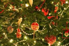 Κινηματογράφηση σε πρώτο πλάνο χριστουγεννιάτικων δέντρων στοκ εικόνες