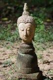 Κινηματογράφηση σε πρώτο πλάνο 400 χρονών του αρχαίου επικεφαλής αγάλματος του Βούδα πετρών στο ιστορικό μουσείο Ταϊλάνδη, γλυπτό Στοκ Φωτογραφίες
