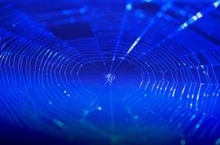 Κινηματογράφηση σε πρώτο πλάνο spiderweb με το σκούρο μπλε υπόβαθρο αφηρημένη τεχνολογία δικτύων σύνδεσης ανασκόπησης Στοκ φωτογραφία με δικαίωμα ελεύθερης χρήσης