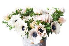 Κινηματογράφηση σε πρώτο πλάνο άσπρες παπαρούνες anemones στο βάζο Πολλά λουλούδια - ελαφρύ υπόβαθρο χειμερινό λουλούδι Στοκ φωτογραφία με δικαίωμα ελεύθερης χρήσης