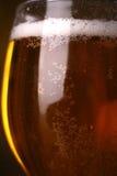 Κινηματογράφηση σε πρώτο πλάνο γυαλιού μπύρας Στοκ Φωτογραφίες