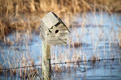 Κινηματογράφηση σε πρώτο πλάνο ενός σπιτιού πουλιών Στοκ εικόνες με δικαίωμα ελεύθερης χρήσης
