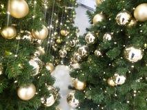Κινηματογράφηση σε πρώτο πλάνο ενός χριστουγεννιάτικου δέντρου Στοκ Εικόνα