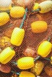 κινηματογράφηση σε πρώτο πλάνο διχτυών του ψαρέματος Στοκ φωτογραφίες με δικαίωμα ελεύθερης χρήσης