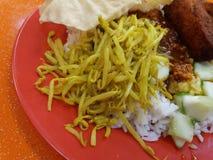 Κινηματογράφηση σε πρώτο πλάνο μαλαισιανού - τρόφιμα της Ινδίας Στοκ φωτογραφία με δικαίωμα ελεύθερης χρήσης
