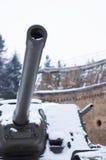 Πολεμική δεξαμενή Στοκ φωτογραφία με δικαίωμα ελεύθερης χρήσης